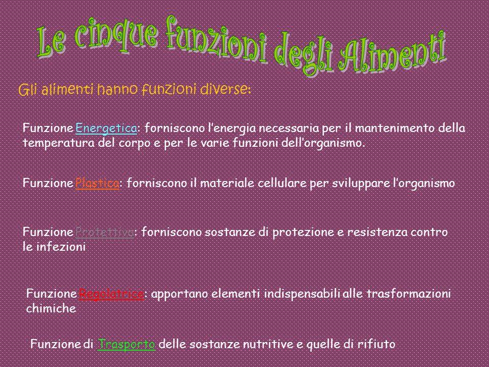Le cinque funzioni degli Alimenti