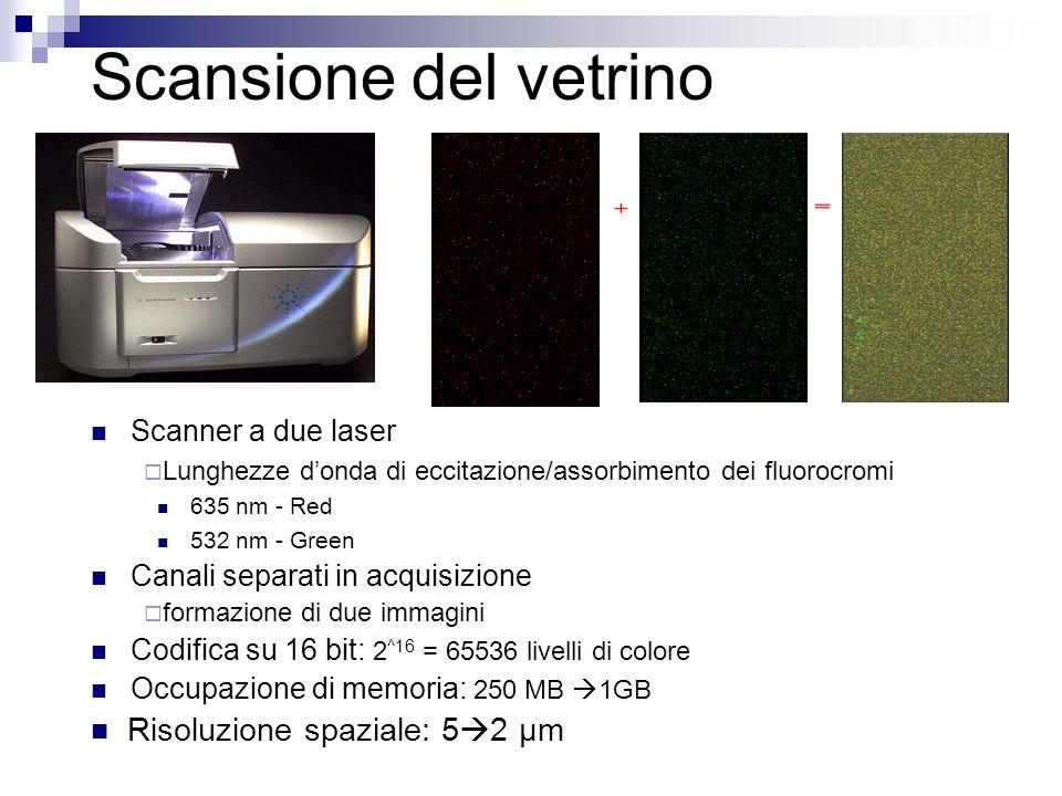Scansione del vetrino Risoluzione spaziale: 52 μm Scanner a due laser