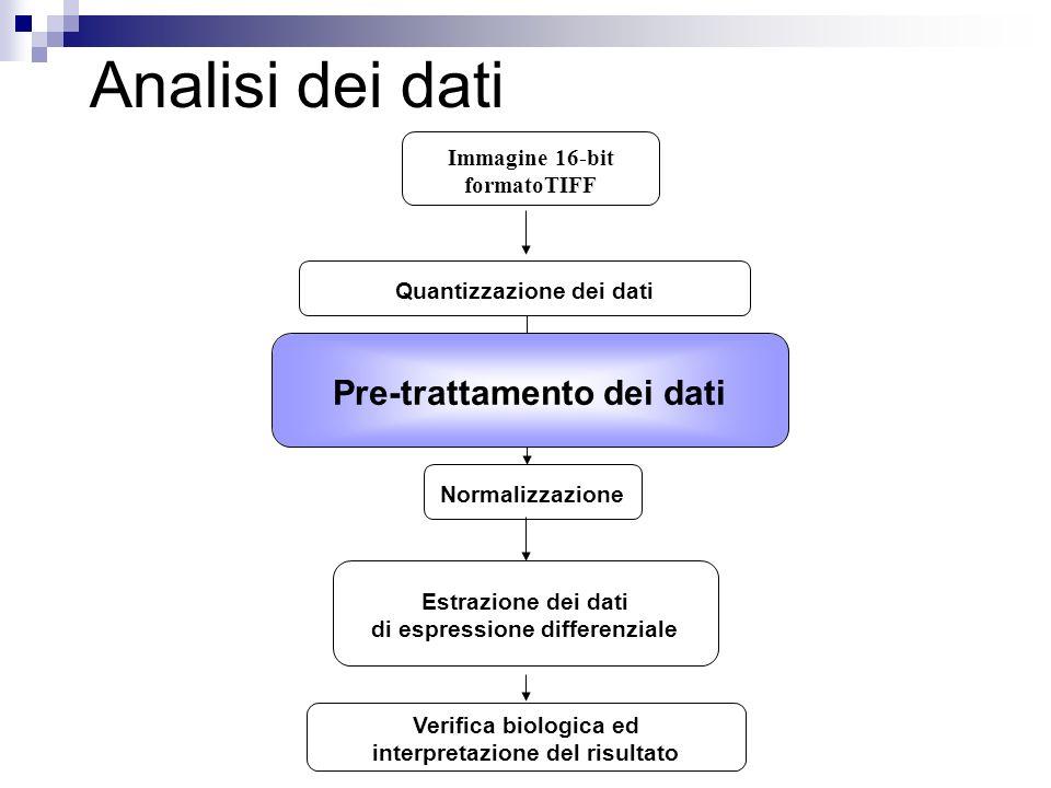 Analisi dei dati Pre-trattamento dei dati Immagine 16-bit formatoTIFF