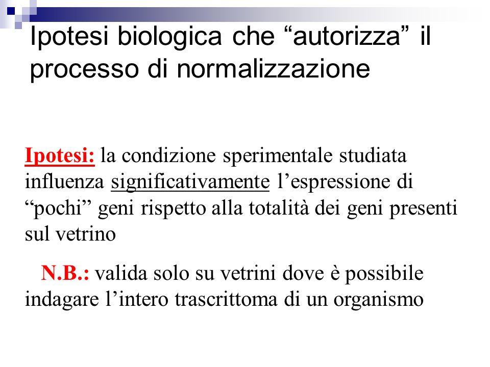 Ipotesi biologica che autorizza il processo di normalizzazione