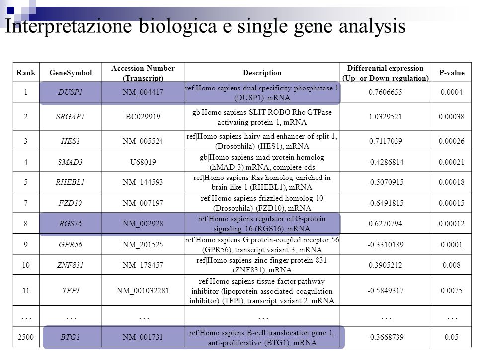 Interpretazione biologica e single gene analysis