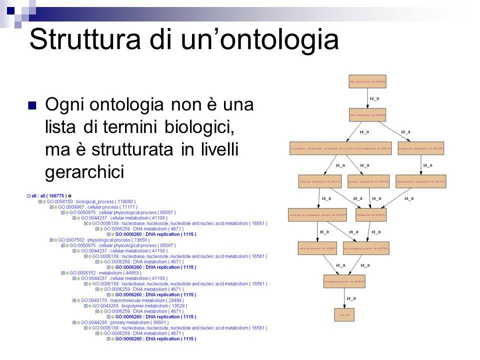 Struttura di un'ontologia