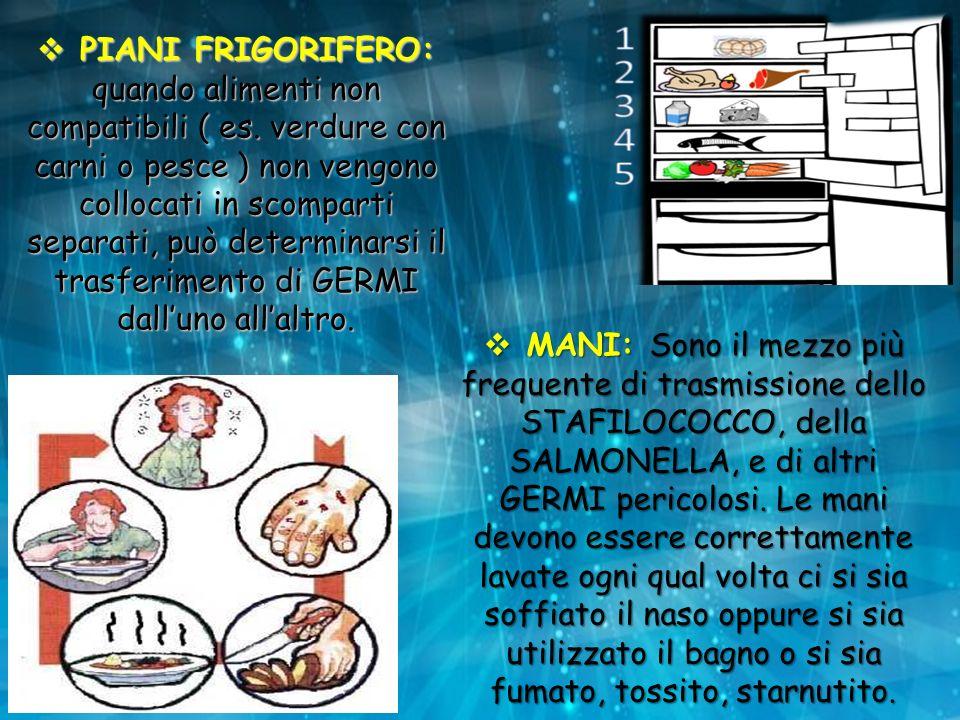 PIANI FRIGORIFERO: quando alimenti non compatibili ( es