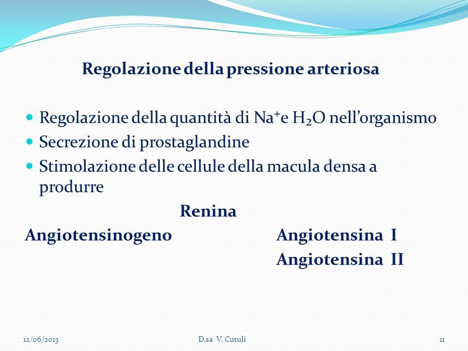 Regolazione della pressione arteriosa