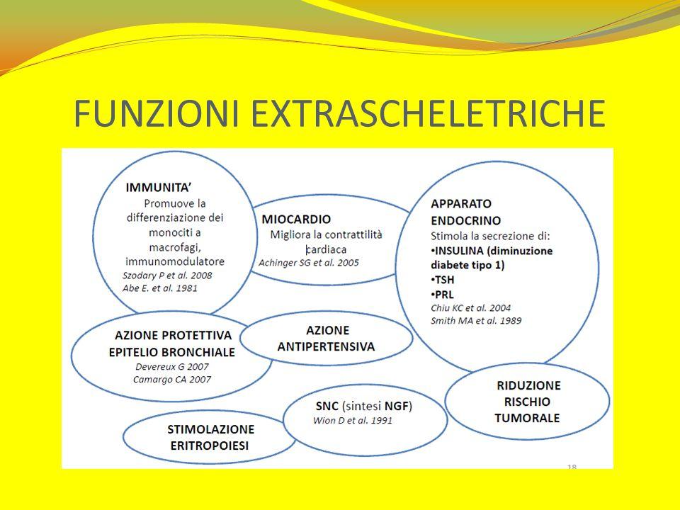 FUNZIONI EXTRASCHELETRICHE