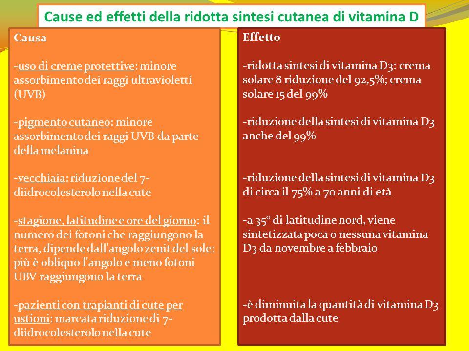 Cause ed effetti della ridotta sintesi cutanea di vitamina D