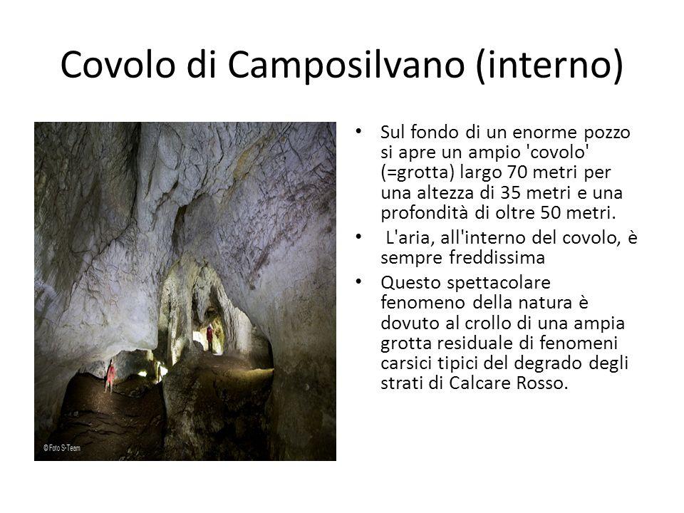Covolo di Camposilvano (interno)