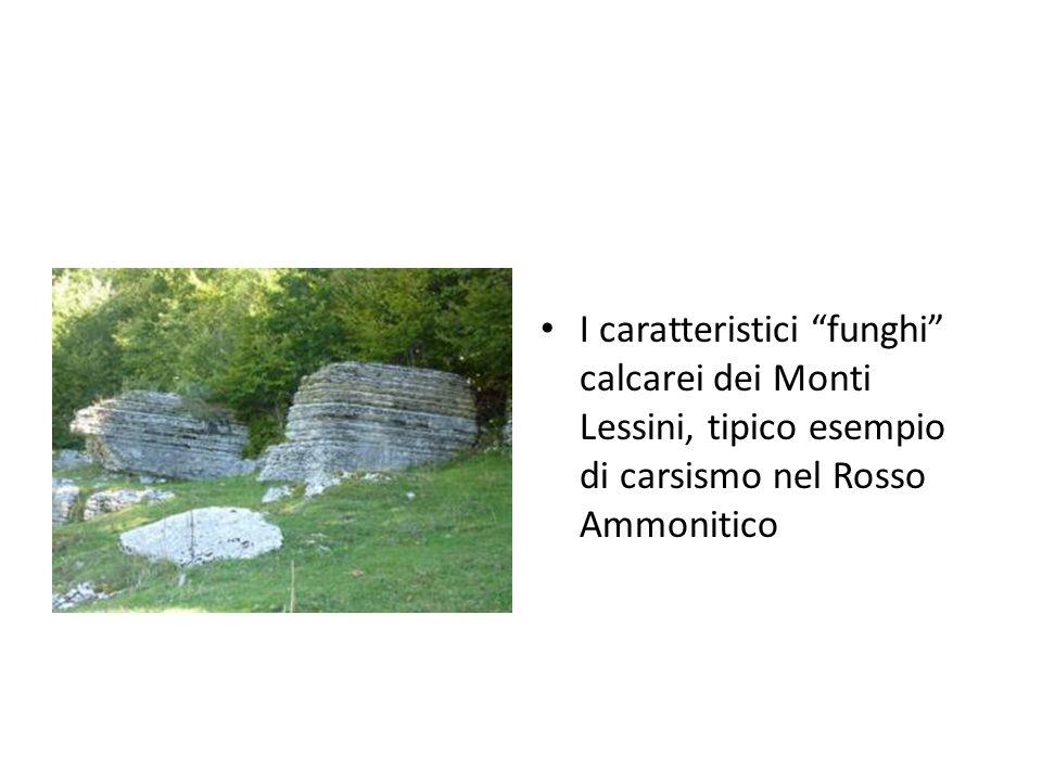 I caratteristici funghi calcarei dei Monti Lessini, tipico esempio di carsismo nel Rosso Ammonitico