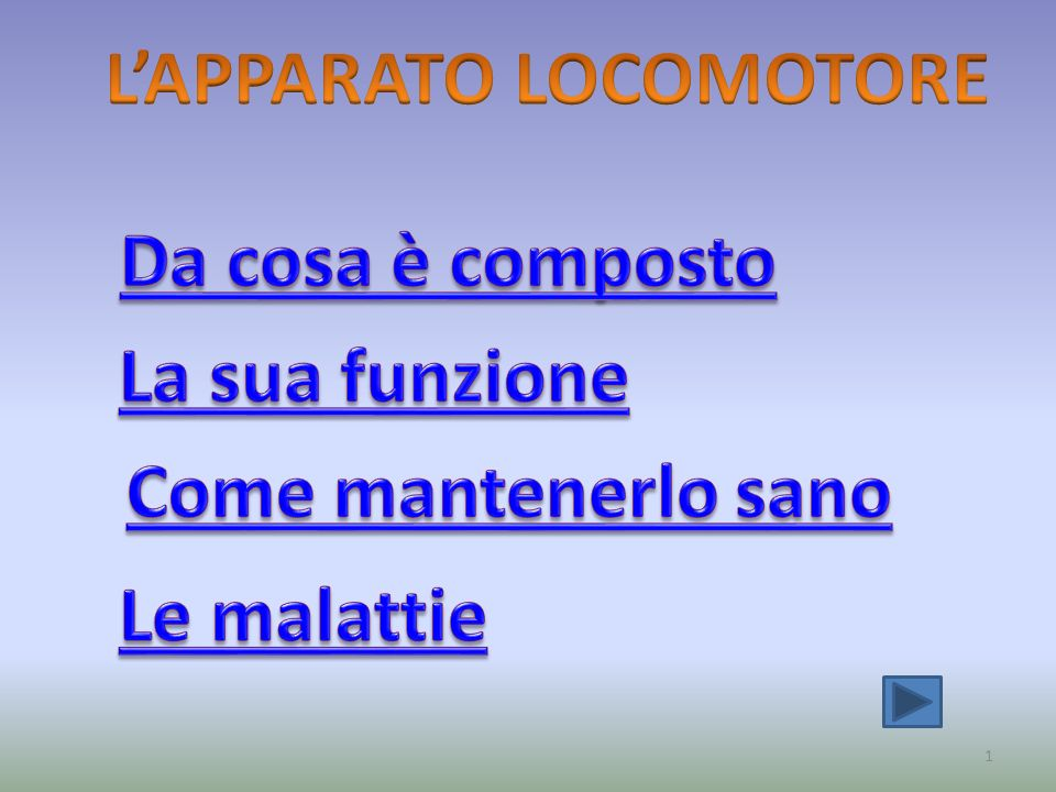 L'APPARATO LOCOMOTORE