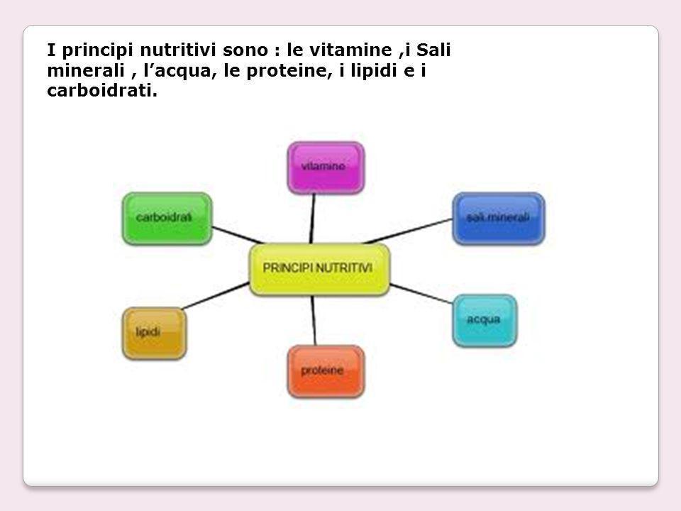 I principi nutritivi sono : le vitamine ,i Sali minerali , l'acqua, le proteine, i lipidi e i carboidrati.