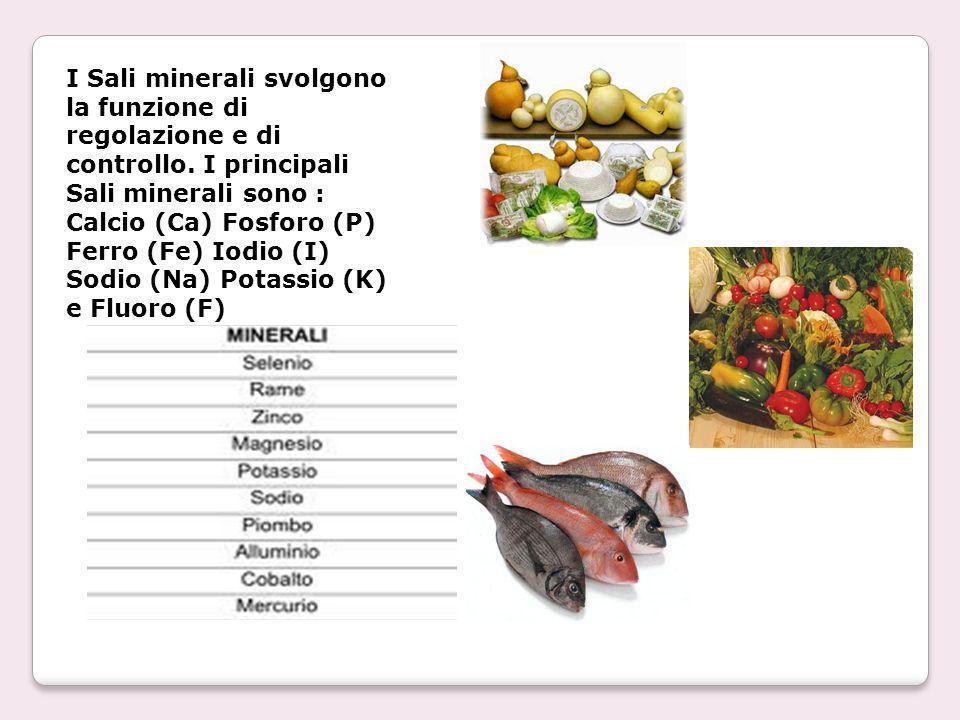 I Sali minerali svolgono la funzione di regolazione e di controllo