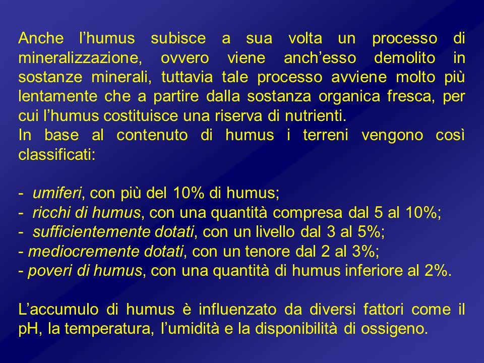 Anche l'humus subisce a sua volta un processo di mineralizzazione, ovvero viene anch'esso demolito in sostanze minerali, tuttavia tale processo avviene molto più lentamente che a partire dalla sostanza organica fresca, per cui l'humus costituisce una riserva di nutrienti.