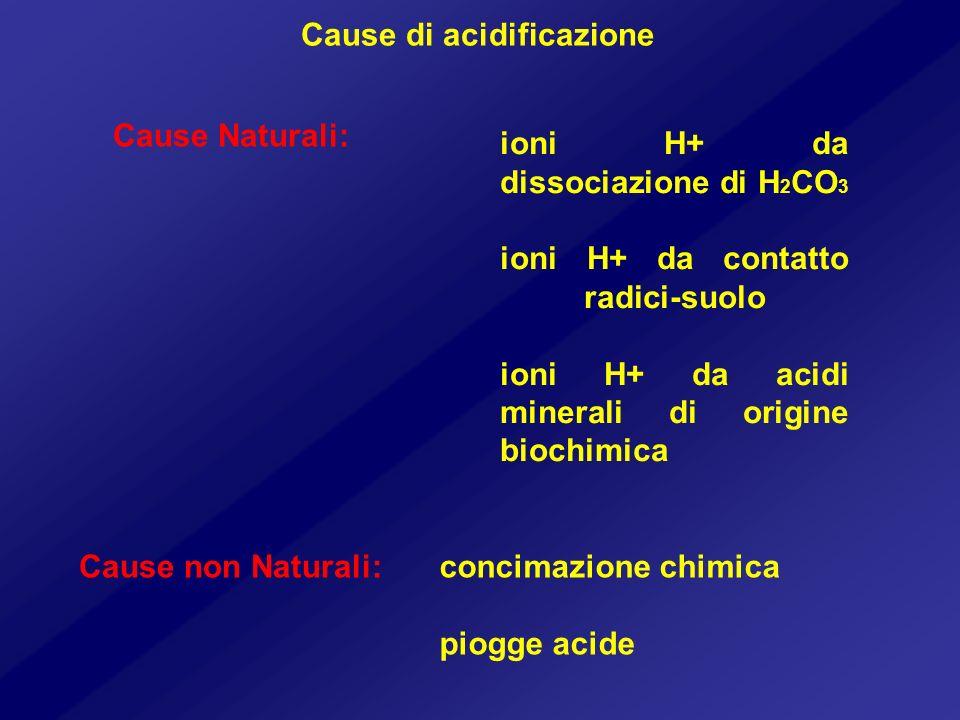 Cause di acidificazione