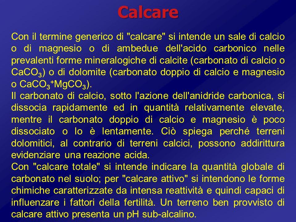 Calcare