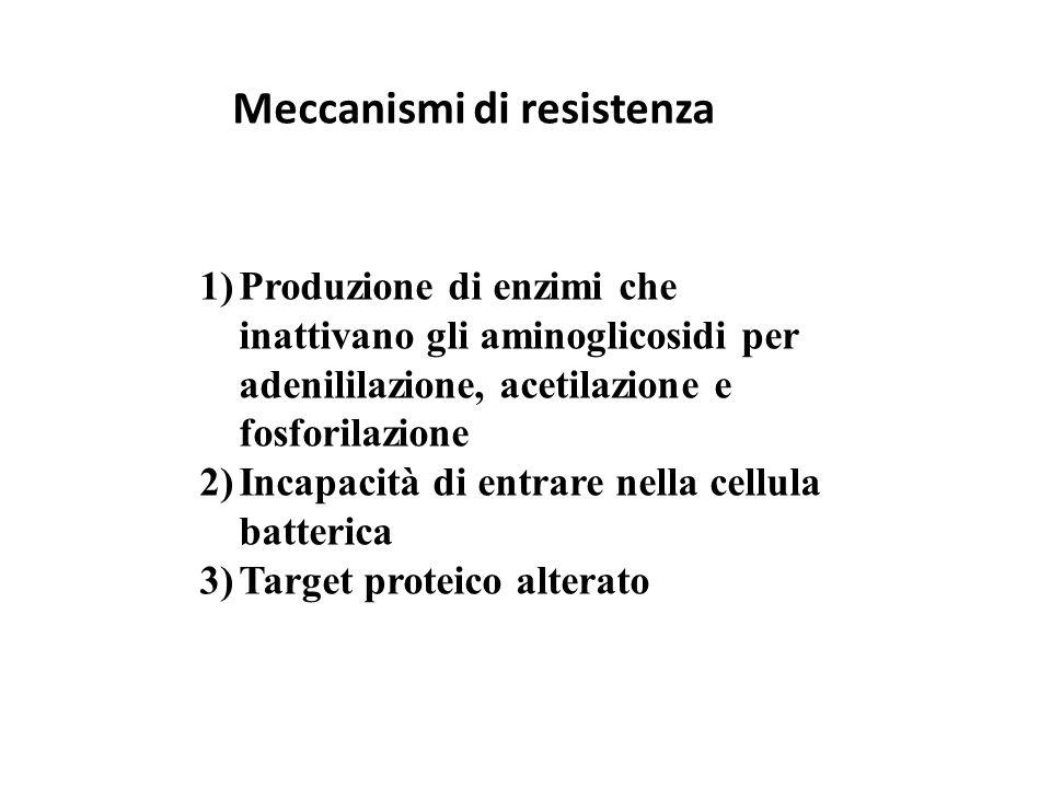 Meccanismi di resistenza