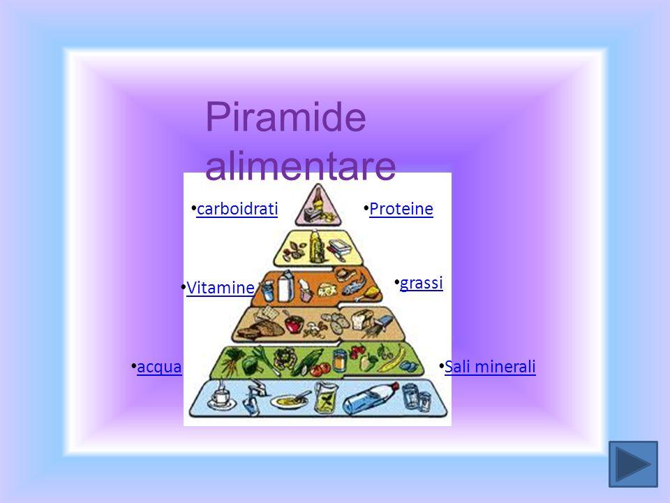 proteine carboidrati grassi Sali minerali Vitamine Proteine acqua