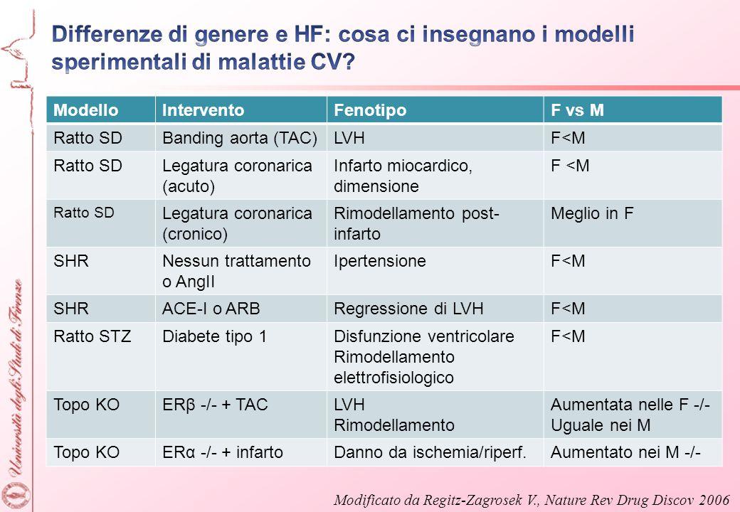 Differenze di genere e HF: cosa ci insegnano i modelli sperimentali di malattie CV