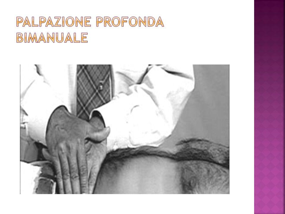 PALPAZIONE PROFONDA BIMANUALE