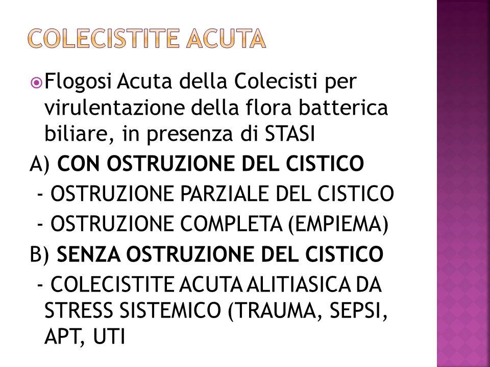 COLECISTITE ACUTA Flogosi Acuta della Colecisti per virulentazione della flora batterica biliare, in presenza di STASI.