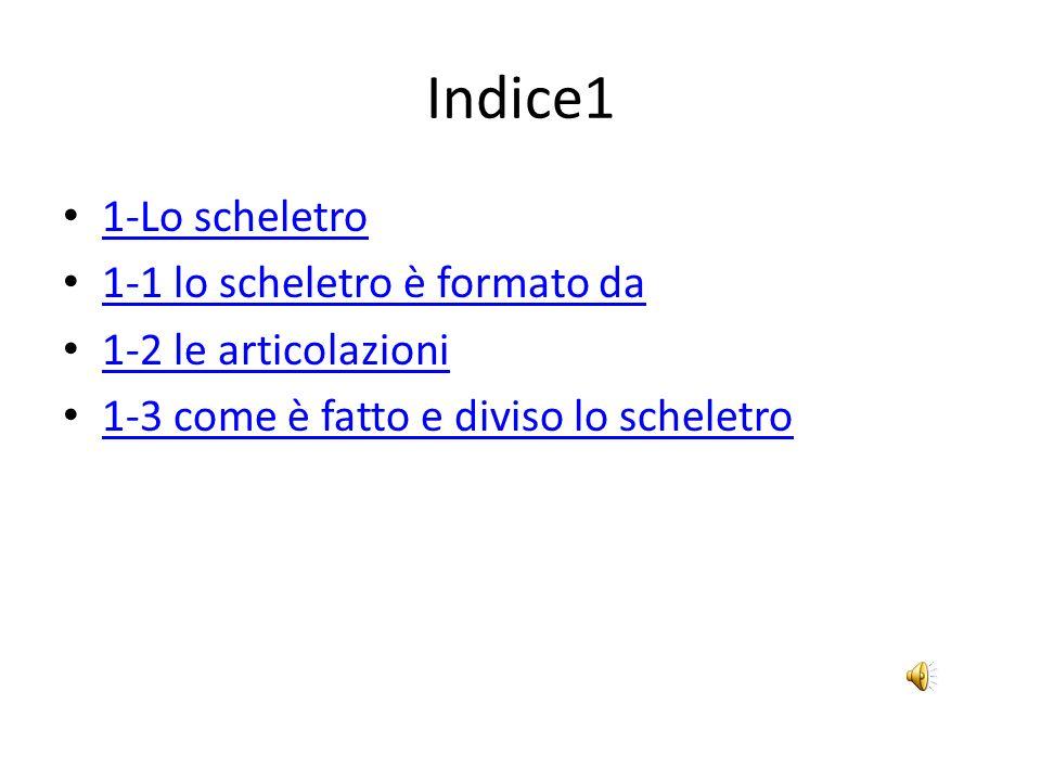 Indice1 1-Lo scheletro 1-1 lo scheletro è formato da