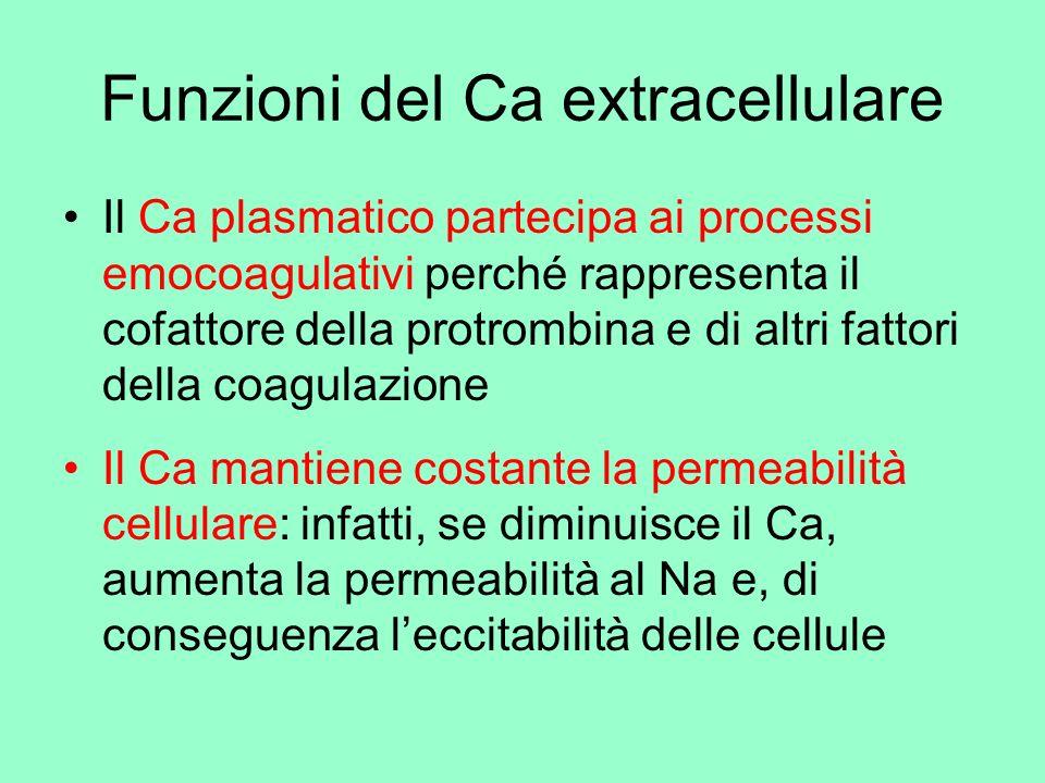 Funzioni del Ca extracellulare