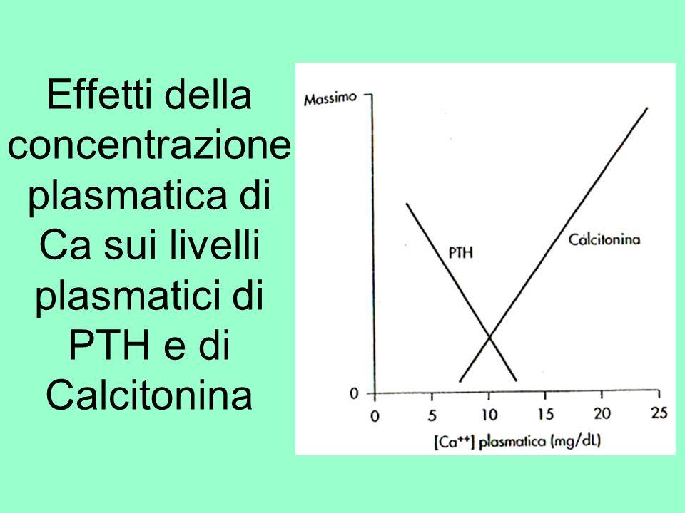 Effetti della concentrazione plasmatica di Ca sui livelli plasmatici di PTH e di Calcitonina