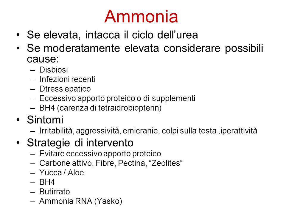 Ammonia Se elevata, intacca il ciclo dell'urea