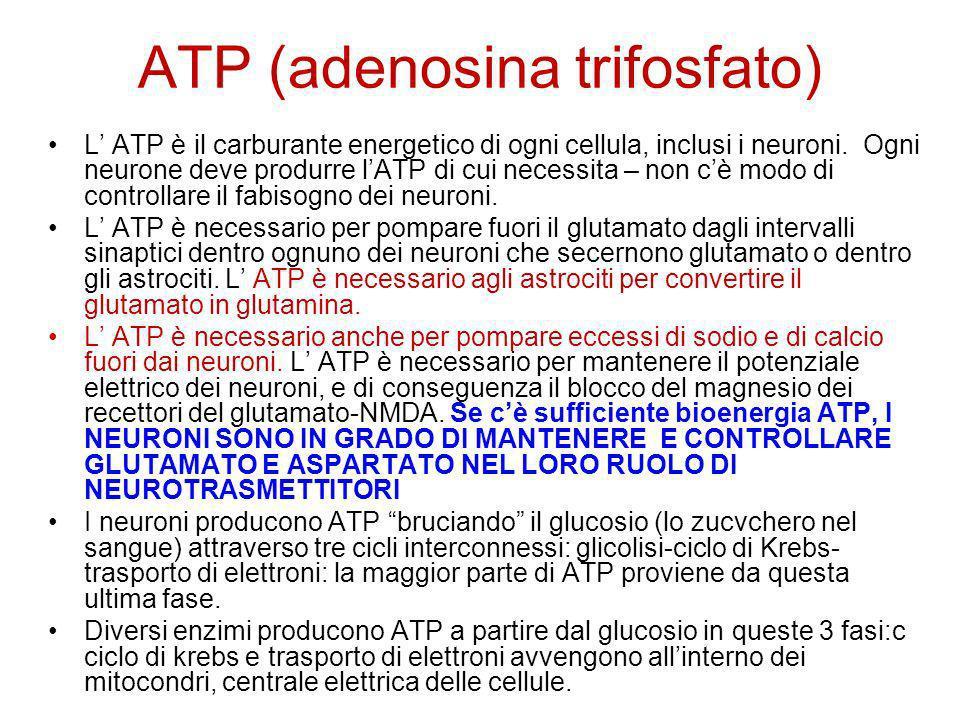 ATP (adenosina trifosfato)