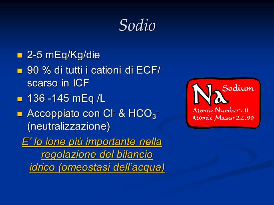 Sodio 2-5 mEq/Kg/die 90 % di tutti i cationi di ECF/ scarso in ICF