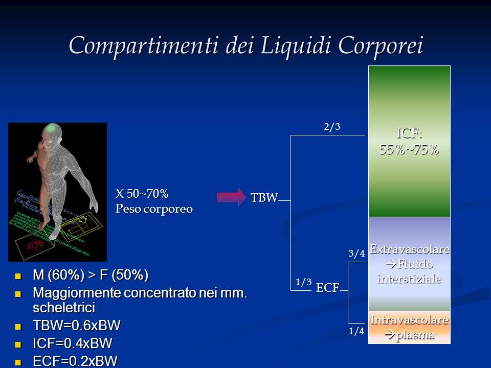 Compartimenti dei Liquidi Corporei