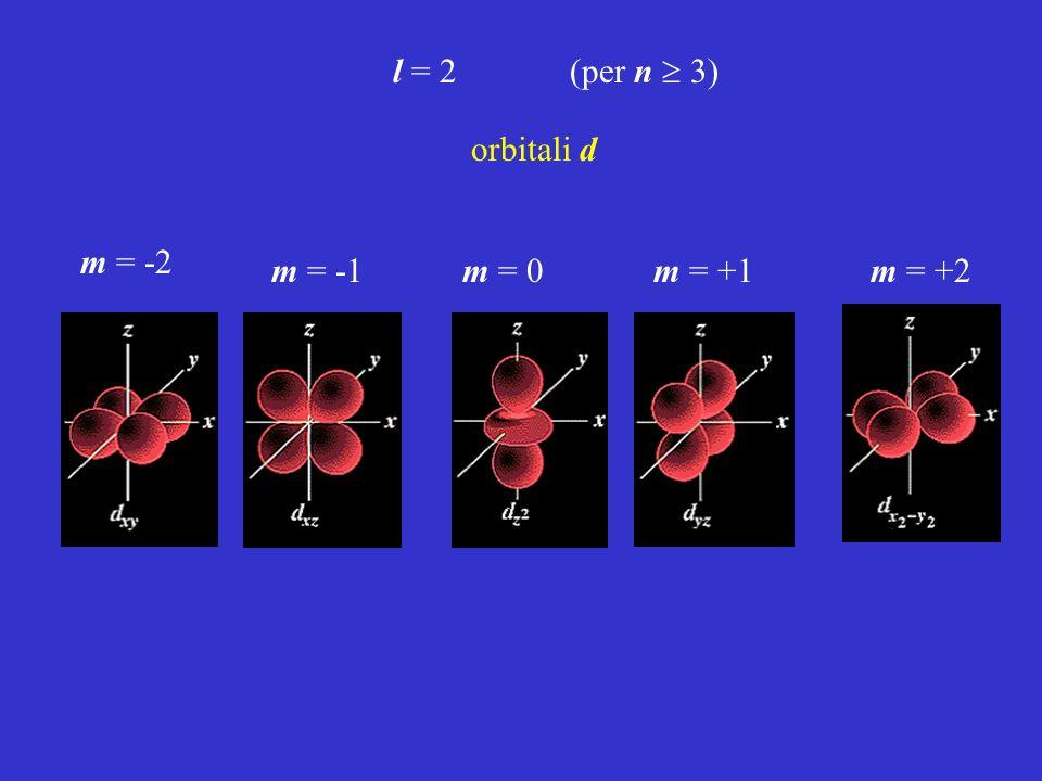 l = 2 (per n  3) orbitali d m = -2 m = -1 m = 0 m = +1 m = +2