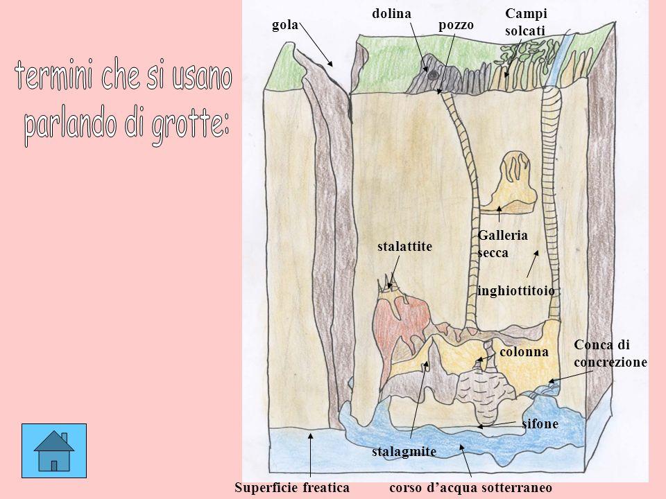 termini che si usano parlando di grotte: dolina Campi solcati gola