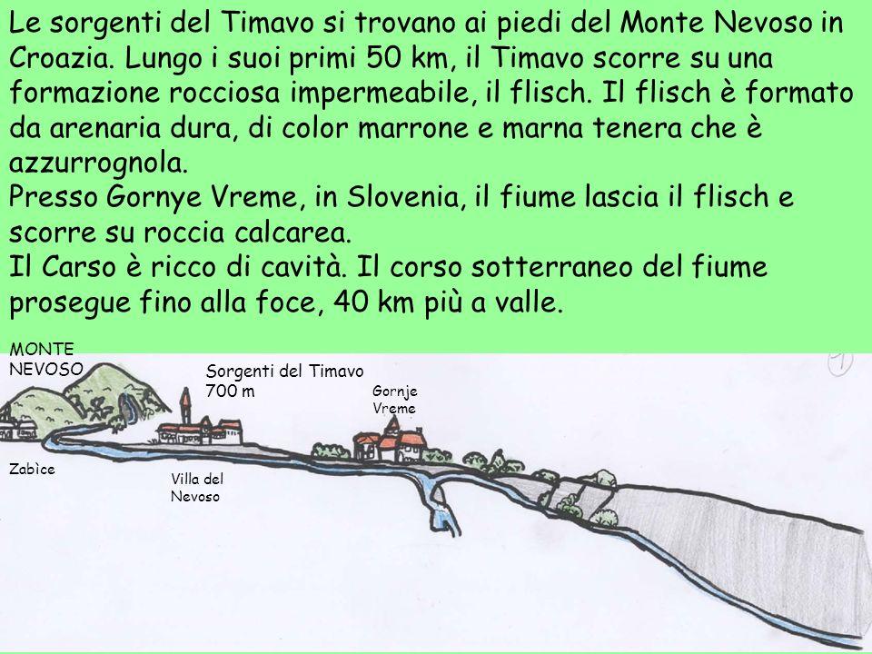 Le sorgenti del Timavo si trovano ai piedi del Monte Nevoso in Croazia