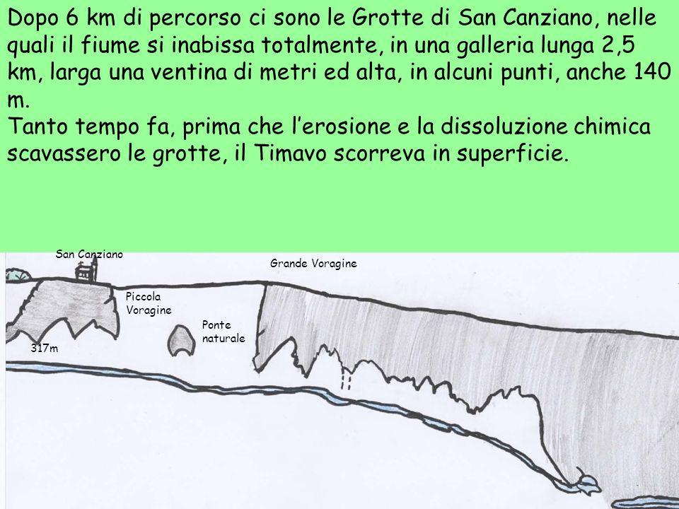 Dopo 6 km di percorso ci sono le Grotte di San Canziano, nelle quali il fiume si inabissa totalmente, in una galleria lunga 2,5 km, larga una ventina di metri ed alta, in alcuni punti, anche 140 m.