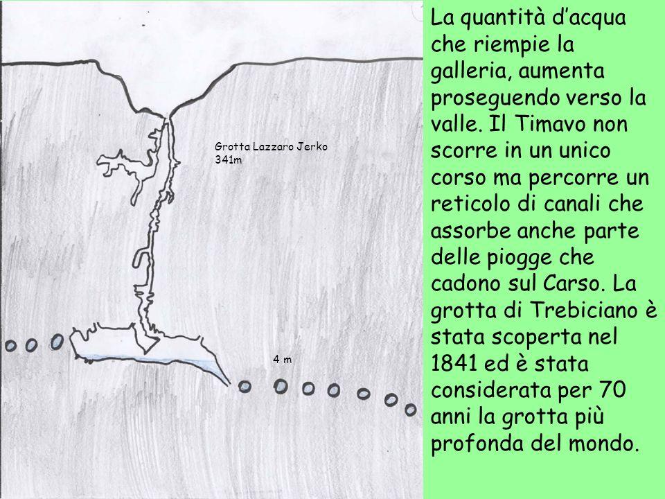 La quantità d'acqua che riempie la galleria, aumenta proseguendo verso la valle. Il Timavo non scorre in un unico corso ma percorre un reticolo di canali che assorbe anche parte delle piogge che cadono sul Carso. La grotta di Trebiciano è stata scoperta nel 1841 ed è stata considerata per 70 anni la grotta più profonda del mondo.