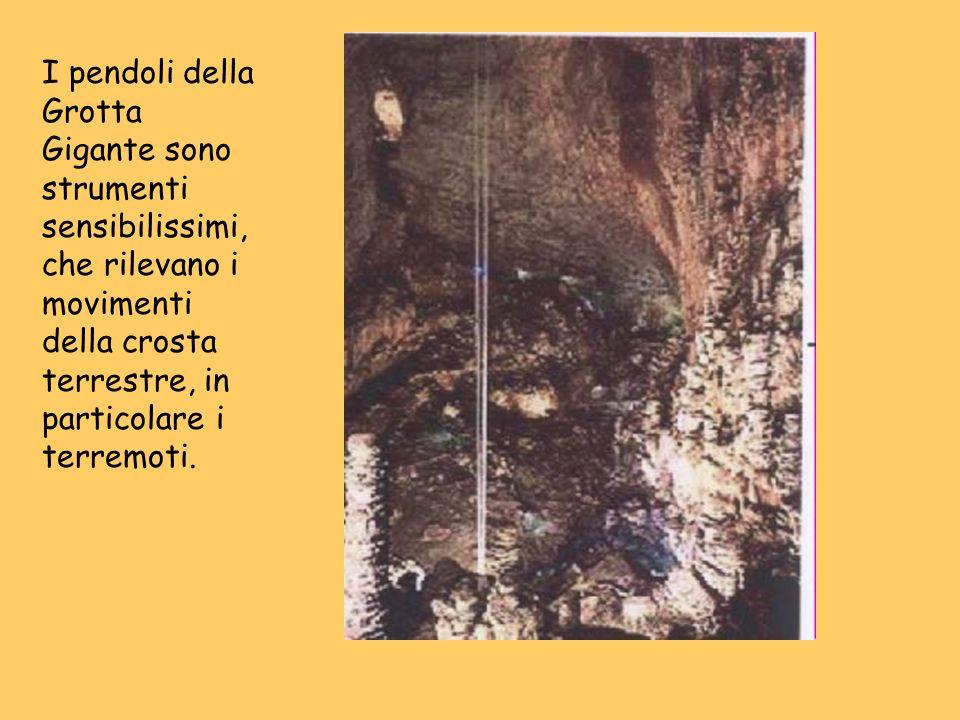 I pendoli della Grotta Gigante sono strumenti sensibilissimi, che rilevano i movimenti della crosta terrestre, in particolare i terremoti.