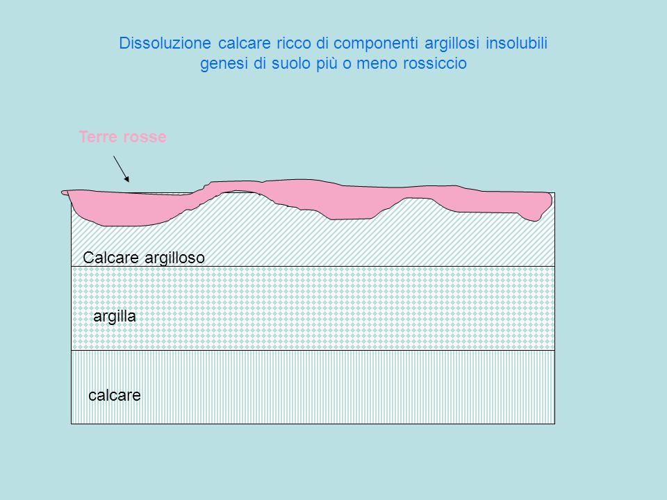 Dissoluzione calcare ricco di componenti argillosi insolubili genesi di suolo più o meno rossiccio