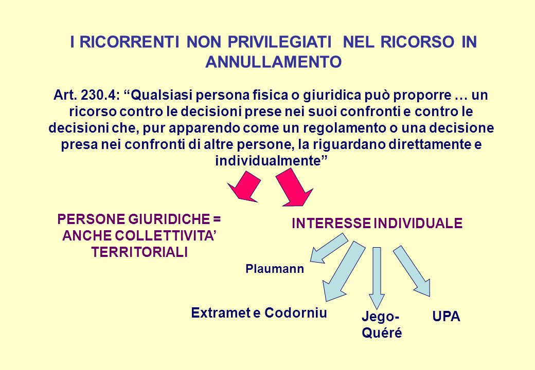 I RICORRENTI NON PRIVILEGIATI NEL RICORSO IN ANNULLAMENTO