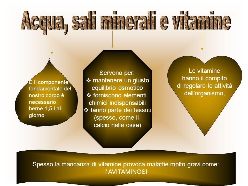 Acqua, sali minerali e vitamine