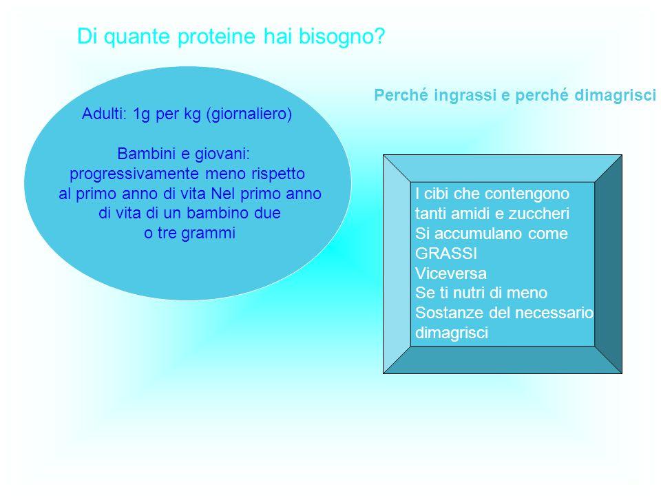 Di quante proteine hai bisogno