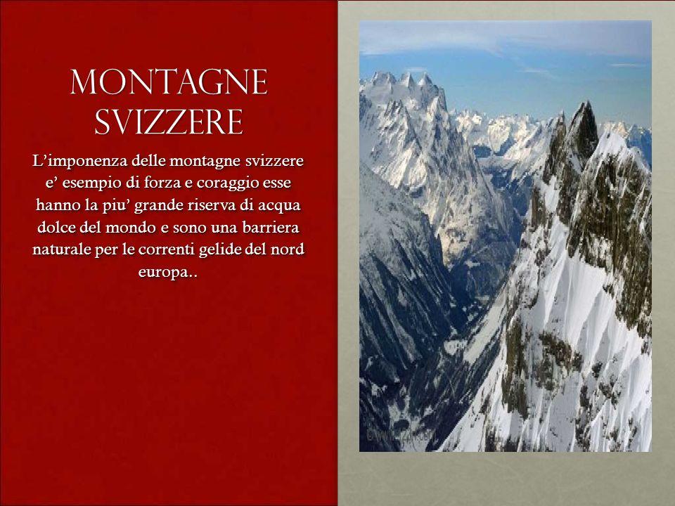 Montagne svizzere