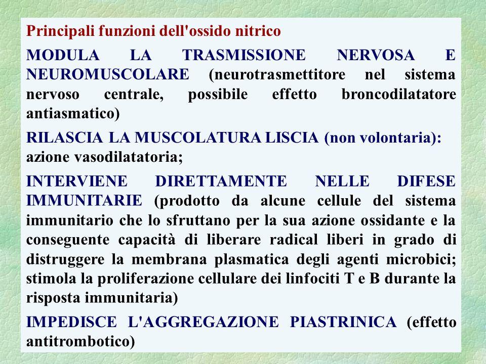 Principali funzioni dell ossido nitrico