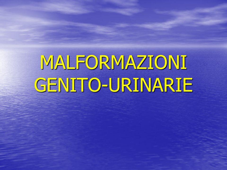 MALFORMAZIONI GENITO-URINARIE