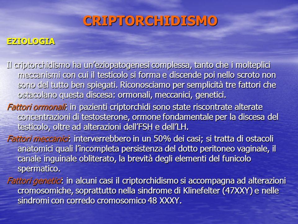 CRIPTORCHIDISMO EZIOLOGIA