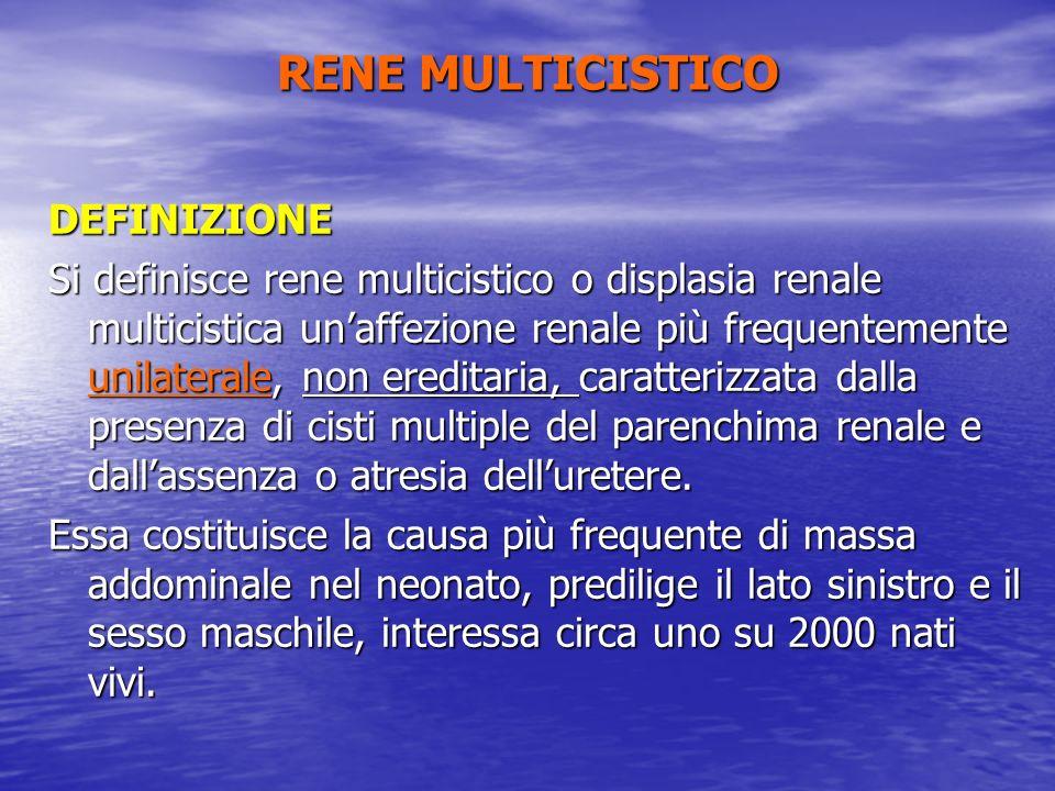RENE MULTICISTICO DEFINIZIONE