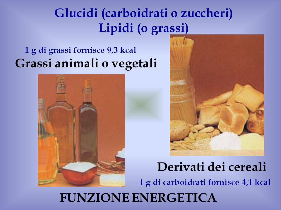Glucidi (carboidrati o zuccheri) Lipidi (o grassi)
