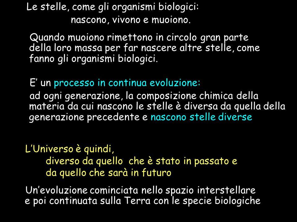 Le stelle, come gli organismi biologici: