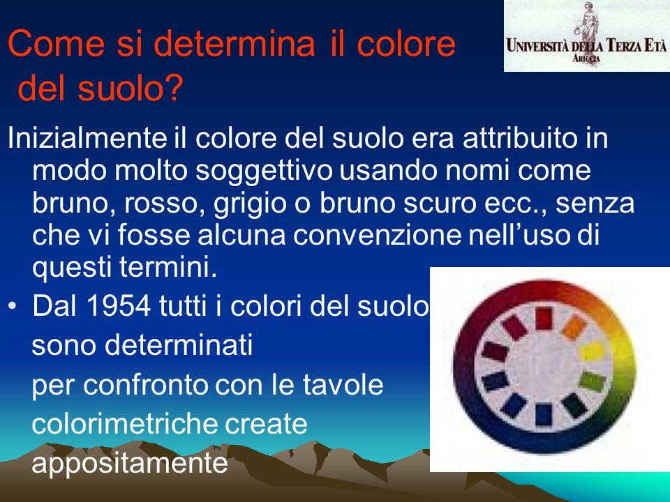 Come si determina il colore del suolo