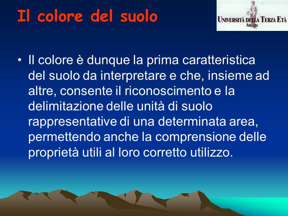 Il colore del suolo