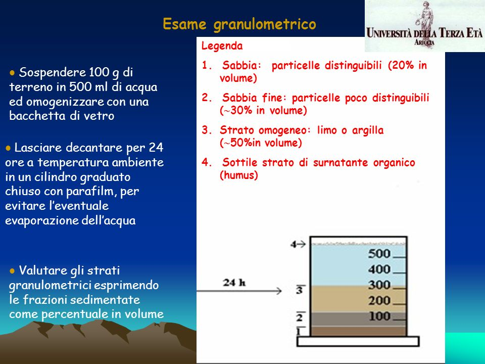 Esame granulometrico Legenda. 1. Sabbia: particelle distinguibili (20% in volume) 2. Sabbia fine: particelle poco distinguibili (30% in volume)